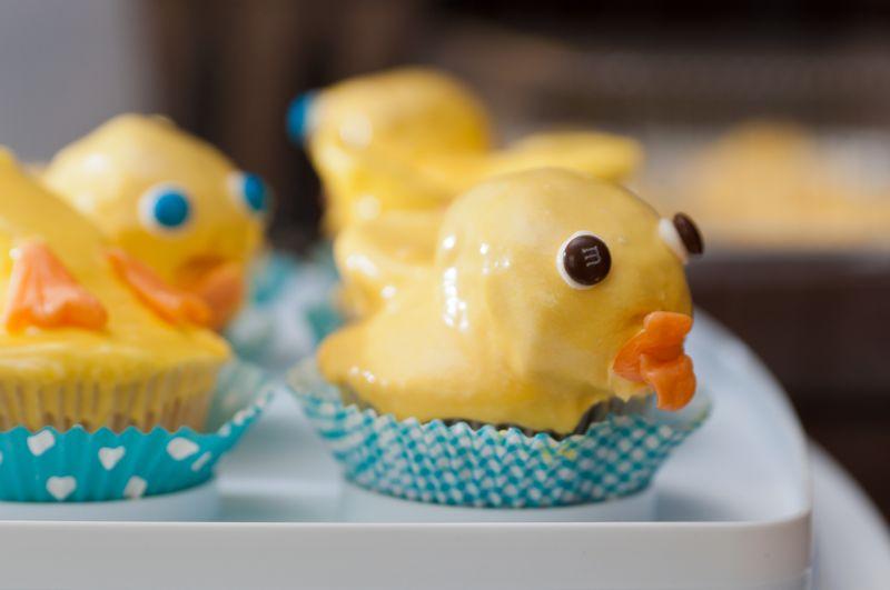 Duck Duck Goose!_2146