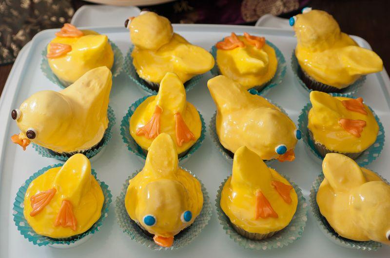 Duck Duck Goose!_2144