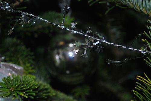 Tree at night-4